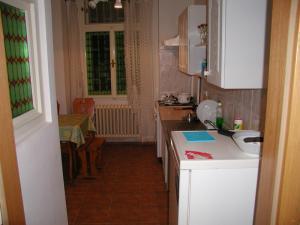 Apartmán U gejzíru lit1  -