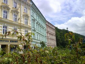 Apartmán Pavlov 3 - Strelicia  Karlovy Vary