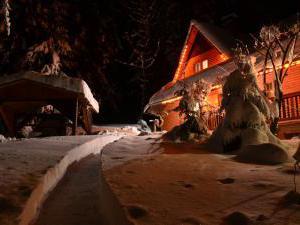Chata ČERNICA - chata v zime