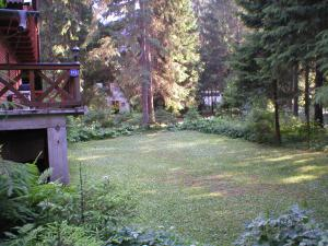 Chata ČERNICA - trávnaté ihrisko