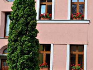 ApartmanSisi - ApartmanSisi Brno, pohled z ulice