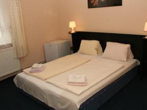 Plzeň Hotel Bayer  -