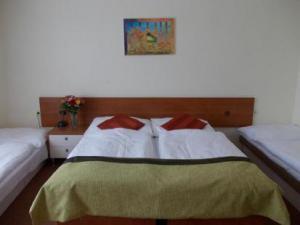 FLORENC - Florenc - hotelový pokoj Praha