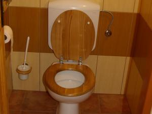 Chalupa VIKI - WC I.