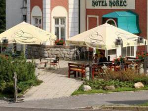 HOTEL HOŘEC **** -