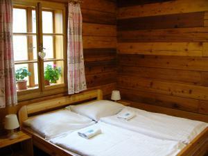 Samota Adelheid  - Bartošovice v Orlických horách - ubytování v pensionu Adelheid