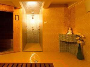 Penzión Hradbová Košice - Suchá sauna a sprcha s masážnymi tryskami