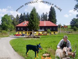 Nová Pec  Petrklíč a Lišák  penziony/hotely - Petrklíč léto