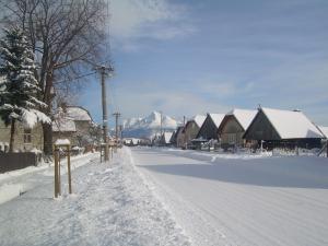 DREVENICA   U  GLOSA   - Obec Liptovská Kokava - v pozadí Kriváň