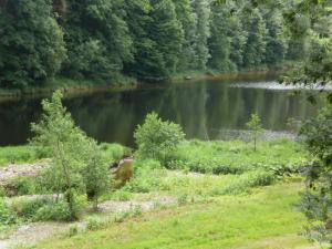 Chata Pastviny - Chata pro rybáře, pohled z chaty