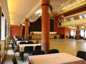 Hotel Týnec - Společenský sál - Hotel Týnec