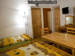 Apartmány Na Zlaté stezce *** (Stožec - České Žleby) - Třílůžková ložnice E