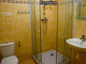 Apartmány Na Zlaté stezce *** (Stožec - České Žleby) - Koupelna
