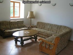 Apartmány U Zlazé stoky *** (CHKO Třeboňsko) - Společenská místnost