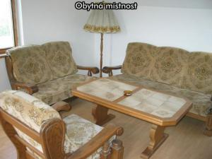 Apartmány U Zlazé stoky *** (CHKO Třeboňsko) - Obytná místnost