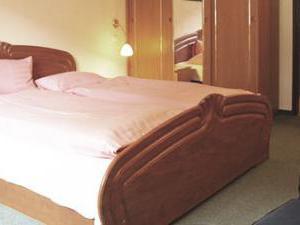 Hotel Drnholec - Starý pokoj