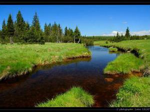 Penzion a chalupa hluboky potok -