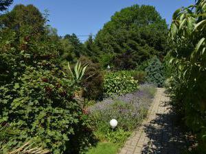 PENZION NA SAMOTĚ - zahrada