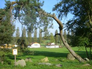 Pension Vital   Vital-Park Drahotín - Areál Vital-Parku - pohled od lesa