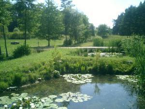 Pension Vital   Vital-Park Drahotín - jezírka - biotopy s lekníny