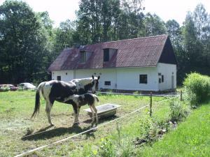 Konírna - rodinný dům