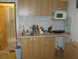 Konírna - rodinný dům - Vybavení kuchyně v apartmanu