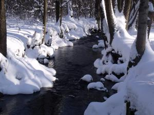 Konírna - rodinný dům - Zima v Mařeničkách