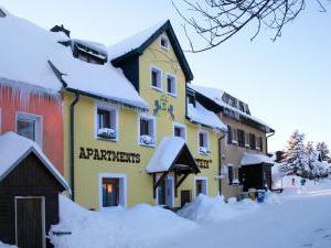 Apartmány Stein Boží Dar