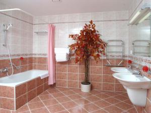 APARTMÁNY VRCHLABÍ - Apartmán - koupelna