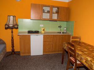 Apartmány Doksy - Apartmán 2 lůžka (patro) - kuchyňka