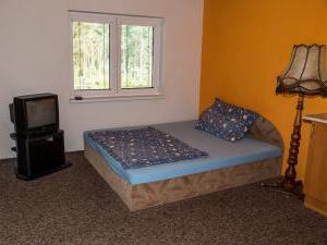 Apartmány Doksy - Apartmán 2 lůžka (patro) - postel + TV