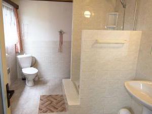 Chalupa Na Paloučku - Chalupa Na Paloučku ubytování v Orlickém Záhoří - koupelna 1