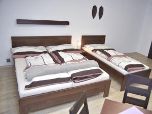 Ubytování Penzion Malé Lipno - Ubytování Penzion Malé Lipno pokoj