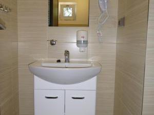 Ubytování Penzion Malé Lipno - Ubytování Penzion Malé Lipno koupelna