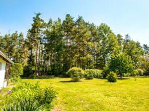 Chalupa Třeboňsko - Zahrada