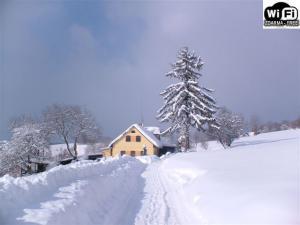 Chalupa u Vyšanských - chalupa zima