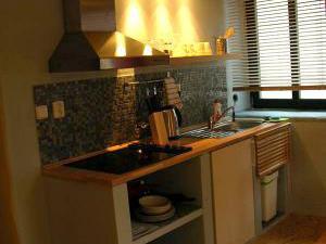 Apartmány Milenium Liberec - Apartmány Milenium Liberec kuchyně