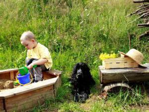 Horská chata Kouty - Horská chata Kouty - pro děti