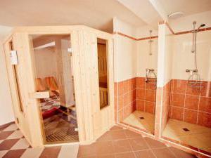 Chata U Vleku - Chata U vleku - sauna