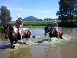 Penzion Vlasta - vyjížďky na koních