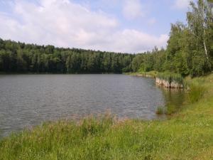 Na Sázavě - pískovna