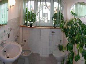 Apartmá PAU - Privat Apartma Ulrych - Apartmán č.1 (koupelna)