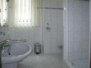 Apartmá PAU - Privat Apartma Ulrych - Apartmán č.3 (koupelna)
