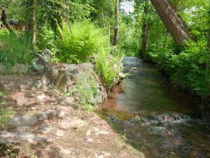 Pohádková chaloupka u Adršpachu a Ratibořického údolí - Potůček, který protéká zahradou u chaloupky.