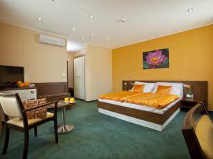 Hotel Viktor - Dvojlôžková izba s manželskou posteľou