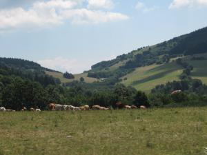 Chata Meduňka - Lopenické sedlo (trasa na Velký Lopeník - rozhlednu)