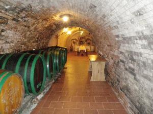 Penzion Surmanovi - Ubytování nad sklípkem v Bořeticích - Kraví Hora