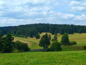 Pension Prameny - Ubytování ve slavkovském lese, pension  Prameny