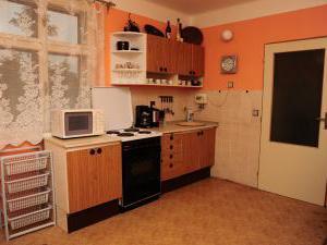 Chalupa - Bílé Poličany - kuchyň nadstandardně vybavená