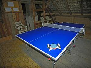 Chalupa - Velký Vřešťov - stolní tenis na půdě